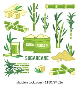 Sugar plant agricultural crops, cane leaf, sugarcane juice vector icons. Sugar cane, sweet plant, natural green stem illustration