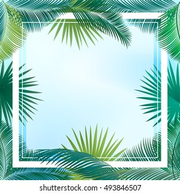 Sukkot palm tree leaves frame. Palm leaf frame. Palm branch leaves sky background. Tropical palm leaf frame with space for text. Jungle background green leaves border. Vector exotic. Summer poster.