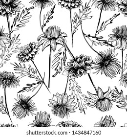 Summer, autumn pattern with chrysanthemum flower, field beautiful plants, hand draws ink. Chrysanthemum ink. Isolated background. Large flowers in vintage style. Wallpaper design, textiles