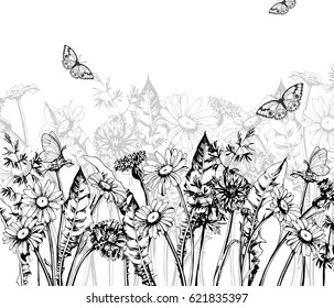 Summer background with Blooming wild flowers, daisies, cornflowers, grass, with butterflies. Template Vector