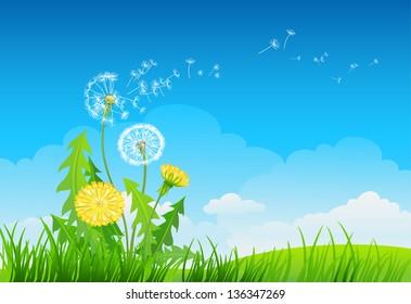 Summer background with dandelion