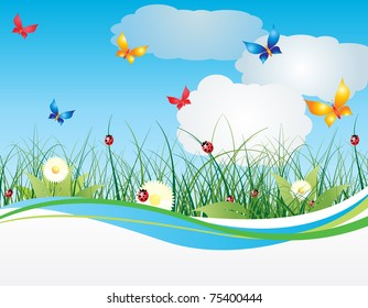 Summer background with flowers and sky