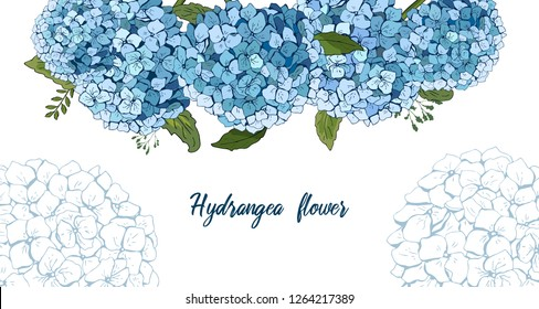 Summer botanical vector design banner. hand drawing . Light blue hydrangea. Natural card or frame. Floral borders. All elements are isolated and editable. template banner