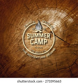 Summer camp badges logos and labels for any use. On wooden background texture. EPS10
