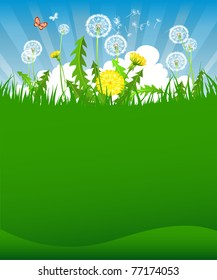 Summer dandelion background with space for text