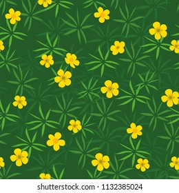Summer field of yellow buttercups seamless pattern