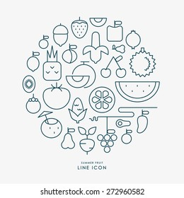 summer fruit line icons infographic vector