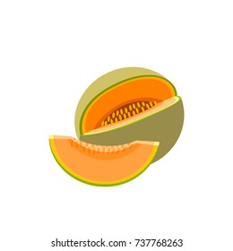 Summer fruits for healthy lifestyle. Cantaloup, whole fruit and slice. Vector illustration cartoon flat icon isolated on white.
