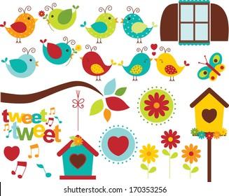 Summer Garden Birds