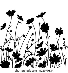 Summer garden. Vector illustration. Background with cosmos flower silhouette.