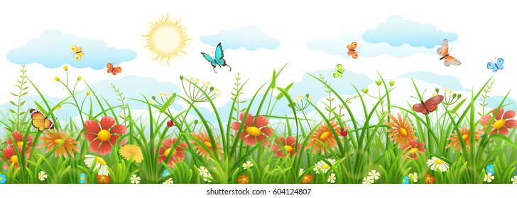 Summer grass with flowers, butterflies, sun and clouds