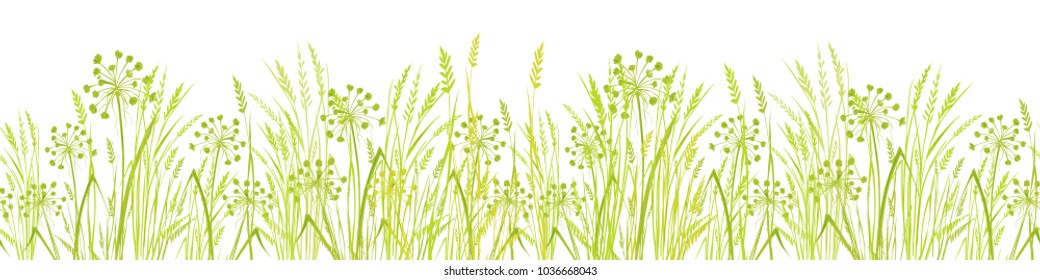 Summer Green Grass isolated on white background. Long format Seamless Pattern. Border. Vector illustration