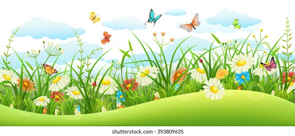 Summer landscape banner with meadow flowers, grass and butterflies
