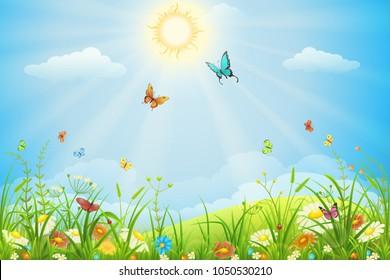 Summer landscape with green grass, flowers, sun, sky and butterflies