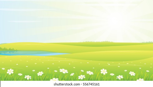 Summer Landscape with Green Grass, Sun and Clear Sky. Vector Meadow