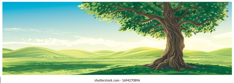 Summer landscape with hills and an old lone tree in the foreground.