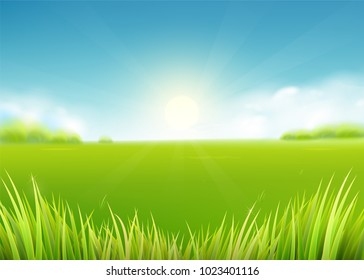 Summer meadow field. Nature background with sun, sunny rays, green grass landscape, trees, clouds, sky. Farmland scene. Vector illustration