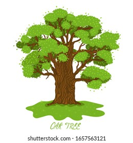 Cartoon Tree Branches Images Stock Photos Vectors Shutterstock Do you want to learn how to illustration about environment, courtyard, drawing, aspen, branch, forest, elegance, cartoon, garden, agriculture, flora, engraving, doodle, background. https www shutterstock com image vector summer oak isolate on white background 1657563121