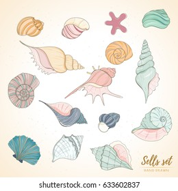 Summer paradise holiday marine set. Seashell illustration can be used for holiday cards, invitation, postcard, menu or website Hand draw underwater objects of sea shells and sea star
