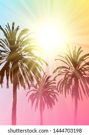 Summer  sale background with palm tree silhouette on sunny sky