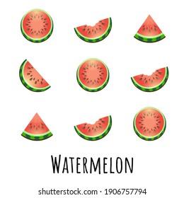 Summer set of fresh ripe watermelon. Single, half and a slice of watermelon. Red Watermelon concept vector illustration.