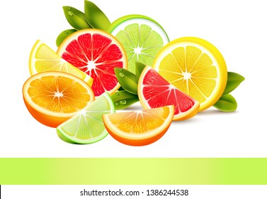 summer special juicy fruits collection vector