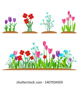 Summer and spring blossom forest and garden flowers field isolated on white background. Nature springtime flower landscape collection. Vector illustration