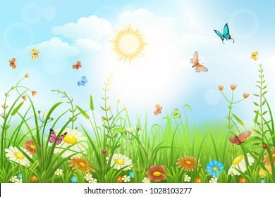 Sommer- oder Frühjahrswiese mit grünem Gras, Blumen und Schmetterlingslandschaft