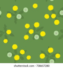 Summer or spring meadow yellow and white dandelions seamless pattern