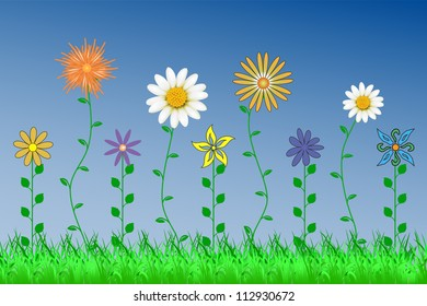 Summer sunny meadow with beautiful flowers
