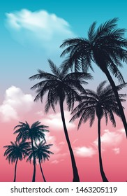 Summer sunset palm trees. Beatiful tropical, exotic wit clouds in sky.Vector illustration. EPS 10