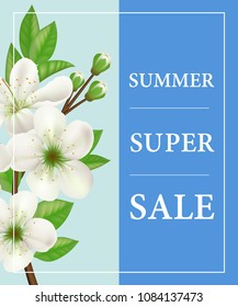 Summer super sale poster design with white blooming twig on blue background. Typed text in frame can be used for flyers, signs, banner.