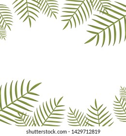 summer time banner foliage icon vector ilustration