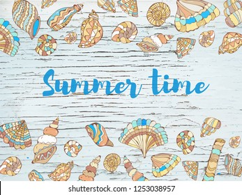 Summer time sea background with shells, hand drawn design. Vector graphic illustration