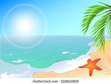 summer time,beach, sea star,blue sky