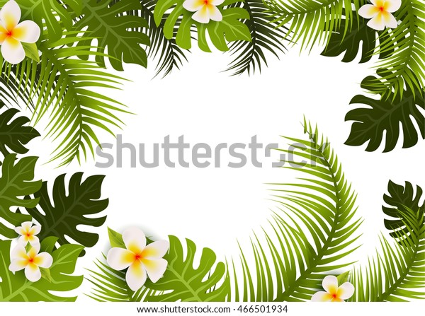 Summer Tropic Leafs Background Frame Floral Stock Vector