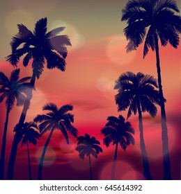 Summer Tropical Background With Hand Drawn Palm