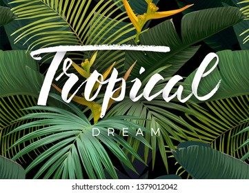 Summer tropical design for banner or flyer with dark green tropical palm leaves and lettering. Vector illustration.