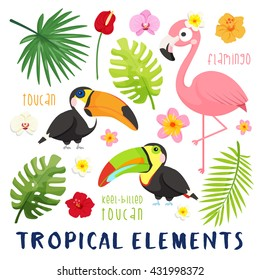 Summer tropical elements set isolated on white background. vector illustrations.