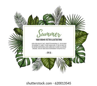 Summer tropical exotic template. Label with Palm leaves (monstera, areca, fan, banana). Hand drawn vector illustration. Perfect for prints, posters, invitations, packing etc