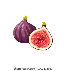 Summer tropical fruits for healthy lifestyle. Fig, purple whole fruit and half. Vector illustration cartoon flat icon isolated on white.