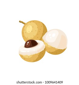 Summer tropical fruits for healthy lifestyle. Longan fruit. Vector illustration cartoon flat icon isolated on white.