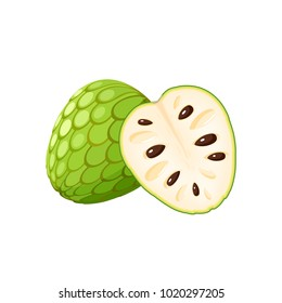 Summer tropical fruits for healthy lifestyle. Cherimoya, whole fruit and half. Vector illustration cartoon flat icon isolated on white.