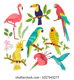 Summer tropical graphic elements. Parrot, toucan and flamingo bird. Jungle floral illustrations, palm leaves, hibiscus, flowers. Vector