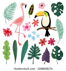 Summer tropical graphic elements. Toucan and flamingo birds. Jungle floral illustrations, palm, monstera leaves, hibiscus flowers. Isolated illustrations, kids flat design, vectors. Exotic nature.
