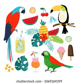 Summer tropical graphic elements. Toucan, parrot birds, cocktails, fruit, pineapple, icecream and jungle floral illustrations, palm leaves. Isolated illustrations, flat design. stock vector.