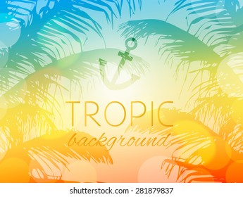 Summer tropical sky sunset background with palm trees and sunshine