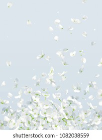Summer wind - luxurious white vector Hydrangea flower and Apple blossom with flying petals in watercolor style for 8 March, wedding, Valentine's Day,  Mother's Day, sales and other seasonal events.