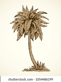 Summertime palmtree scenic view and space for text on white sky backdrop. Freehand ink hand drawn picture sketchy in art vintage scribble etching graphic style pen on paper