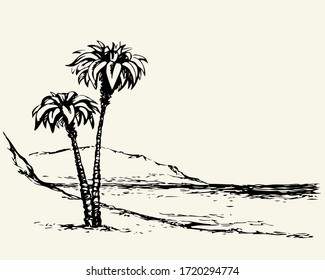 Summertime scenic view. White text space paper backdrop. High lush coconut palmtree plant flora scene. black ink pen hand drawn indian cliff picture symbol design. Art retro doodle engrave print style